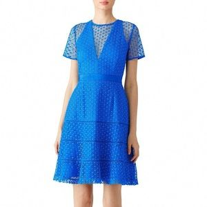 Adelyn Rae Blue Illusion Lace Dress XS NWT